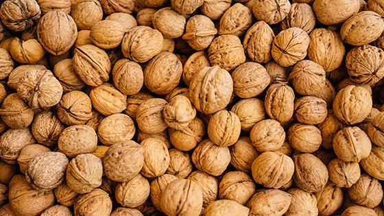 Las Nueces y las semillas